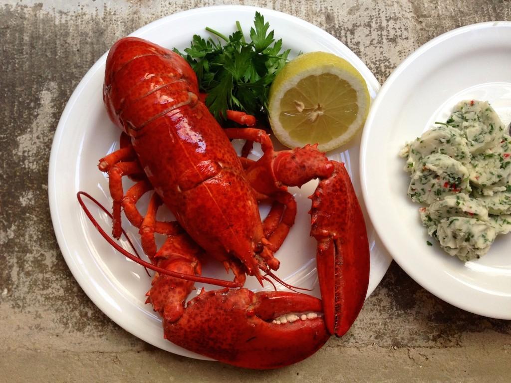 Gotowany homar – najprościej 1